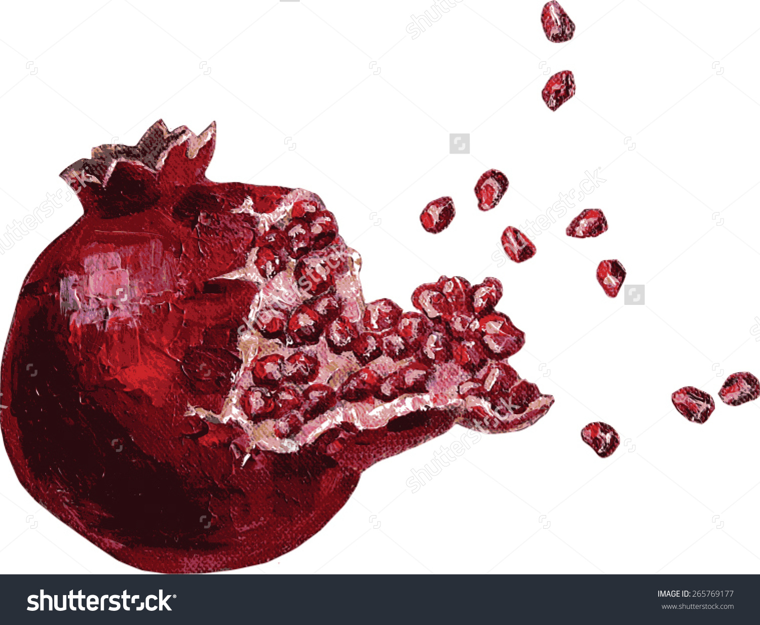 Vector Ripe Pomegranate Fruit Bursting Open Stock Vector 265769177.
