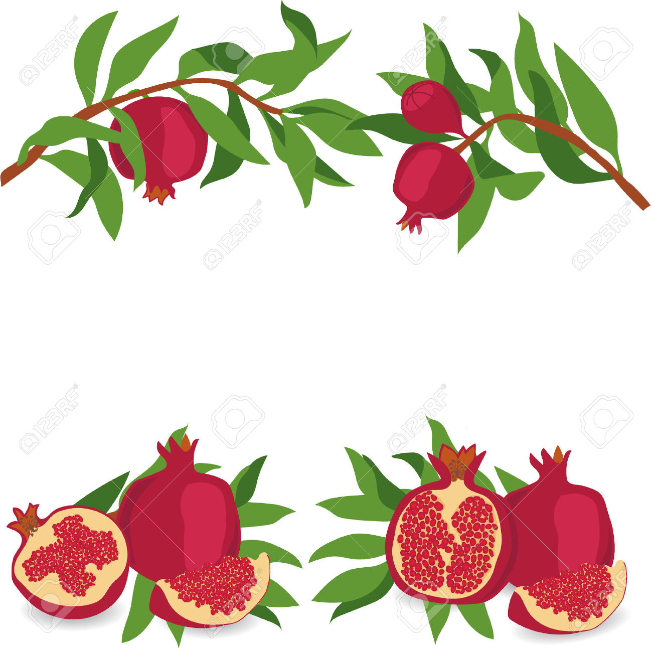 462 Cut Pomegranate Stock Vector Illustration And Royalty Free Cut.