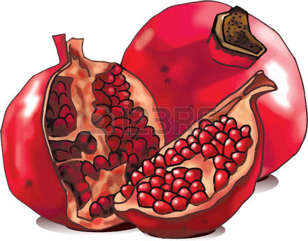 184 Whole Pomegranate Stock Illustrations, Cliparts And Royalty.