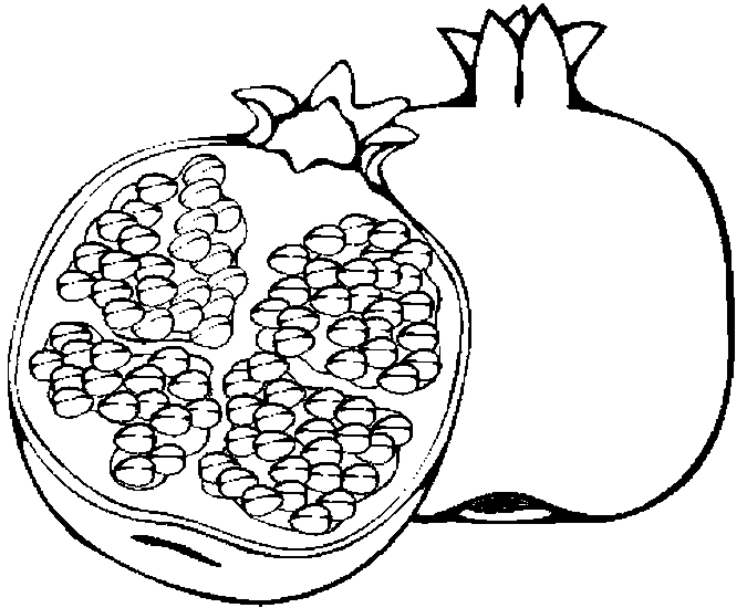 Pomegranate Black And White Clipart.