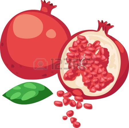 6,523 Pomegranate Stock Illustrations, Cliparts And Royalty Free.