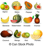 Pomelo Clipart Vector Graphics. 224 Pomelo EPS clip art vector and.