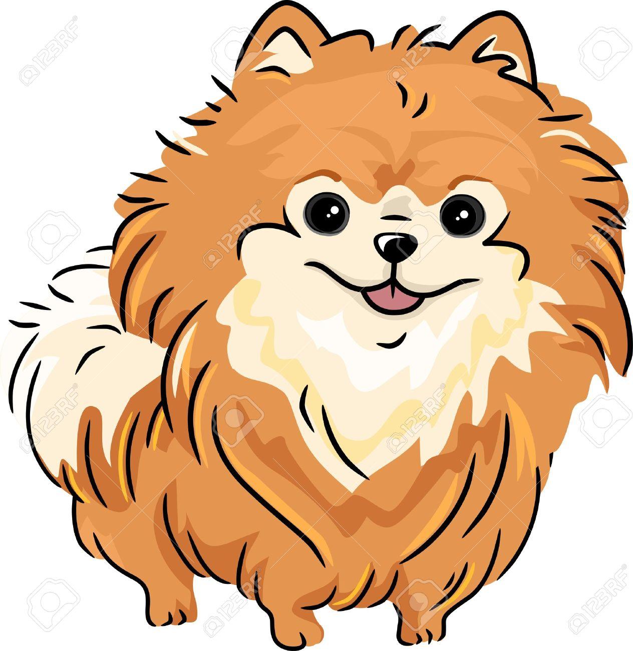 Pomeranian clipart.