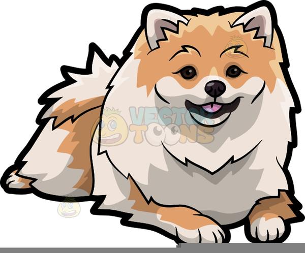 Free Clipart Pomeranian.