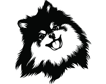 Pomeranian Outline Drawing.