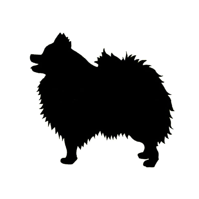 Pomeranian Vector at GetDrawings.com.