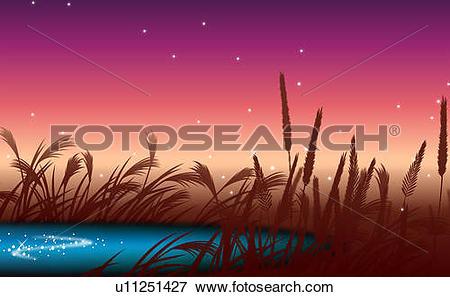 Stock Illustration of Pampas grass near a pond u11251427.