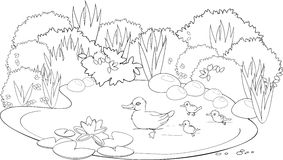 Ducks In A Pond Clipart Black And White.