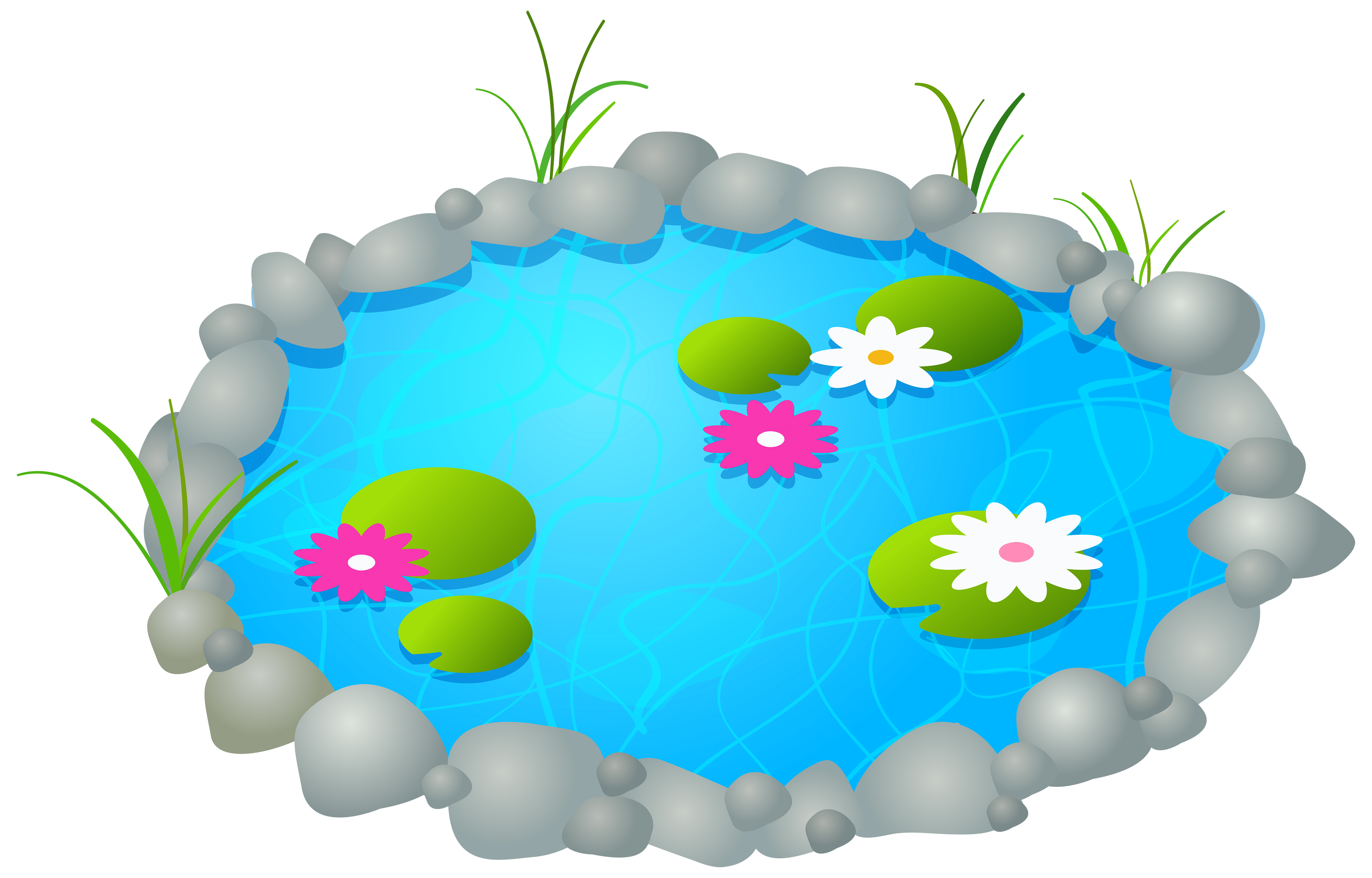 Garden Pond PNG Clipart.