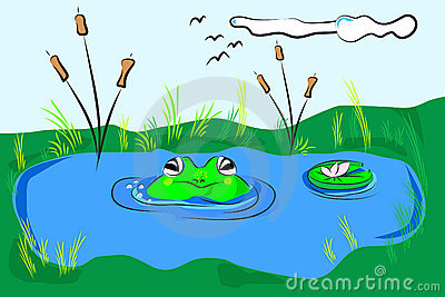 Frog in a pond clipart.