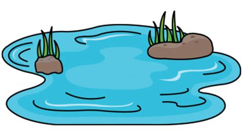 Pond Clipart at GetDrawings.com.