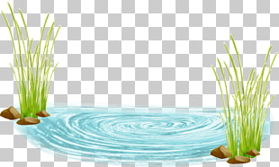 676 pond Water PNG cliparts for free download.
