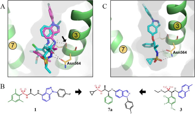 Discovery of indazole ethers as novel, potent, non.