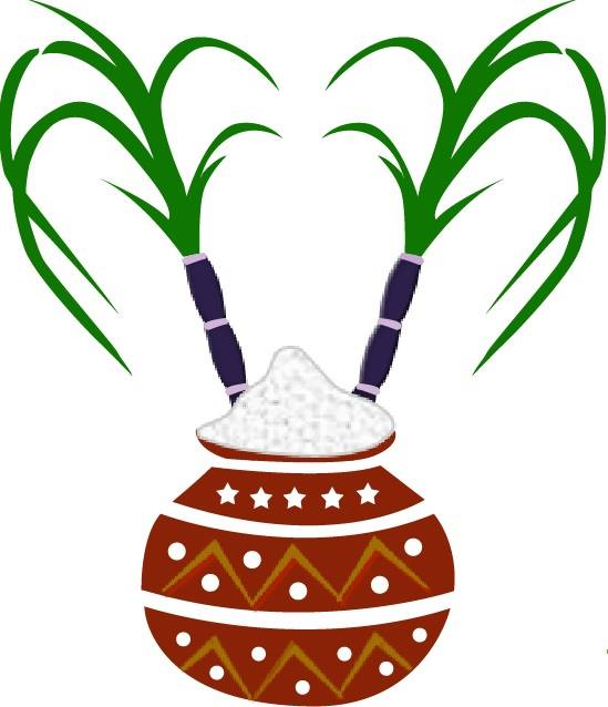 Clipart Of Pongal.
