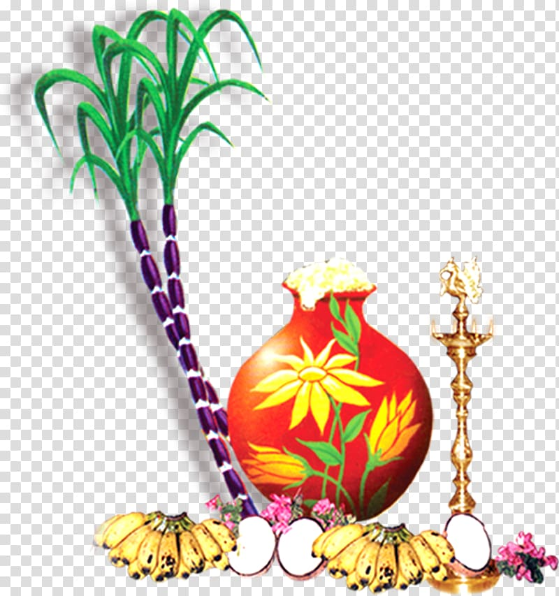 Thai Pongal Wish Greeting Happiness, cane transparent.