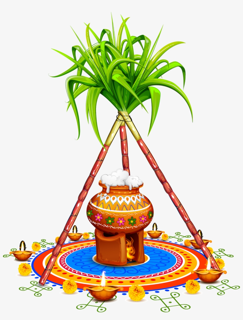 Pongal Pot With Sugarcane Png PNG Image.