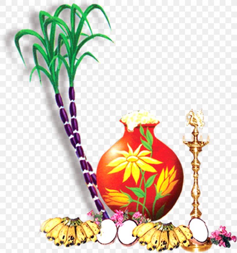 Thai Pongal Wish Greeting Happiness, PNG, 891x950px, Thai.