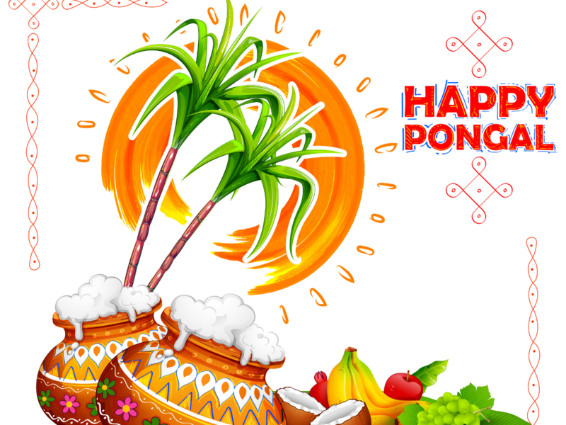 Happy Pongal 2019: Images, Wishes, Quotes, Greetings, Cards.