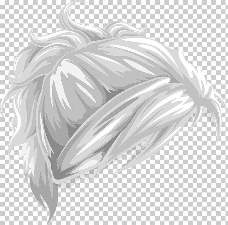 Hair Canities Ponytail , hair PNG clipart.