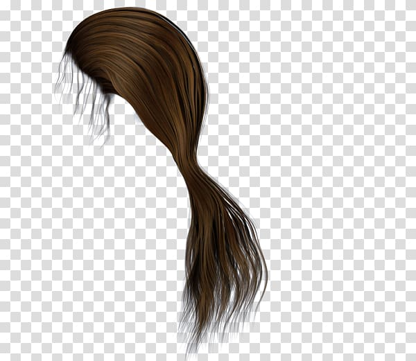 Brown hair Ponytail Hairstyle, hairs transparent background.