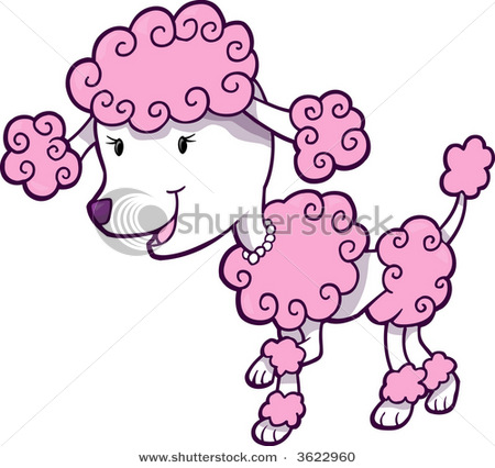 1000+ images about Poodles on Pinterest.