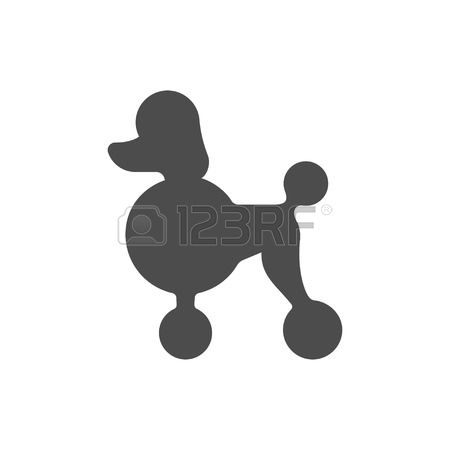153 Show Poodle Stock Vector Illustration And Royalty Free Show.