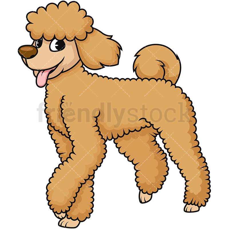 420 Poodle free clipart.