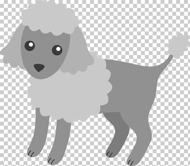 Miniature Poodle Puppy Toy Poodle , doggie PNG clipart.