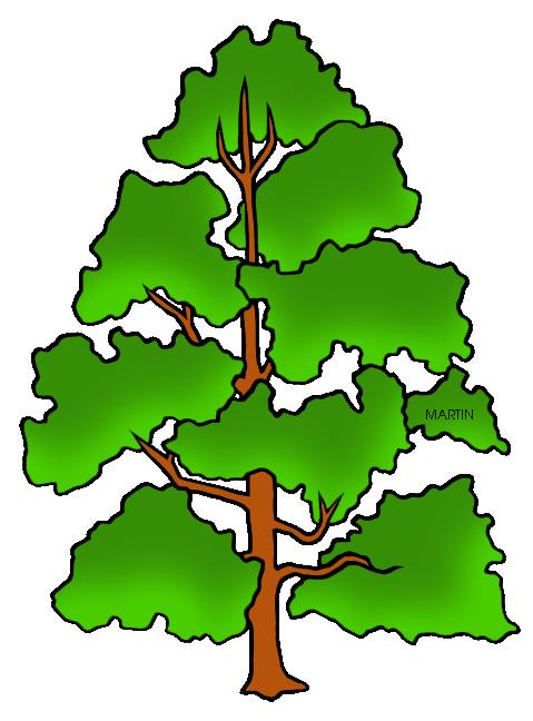 Poplar tree clipart.