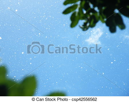 Stock Image of Poplar fluff on a background of the blue sky.