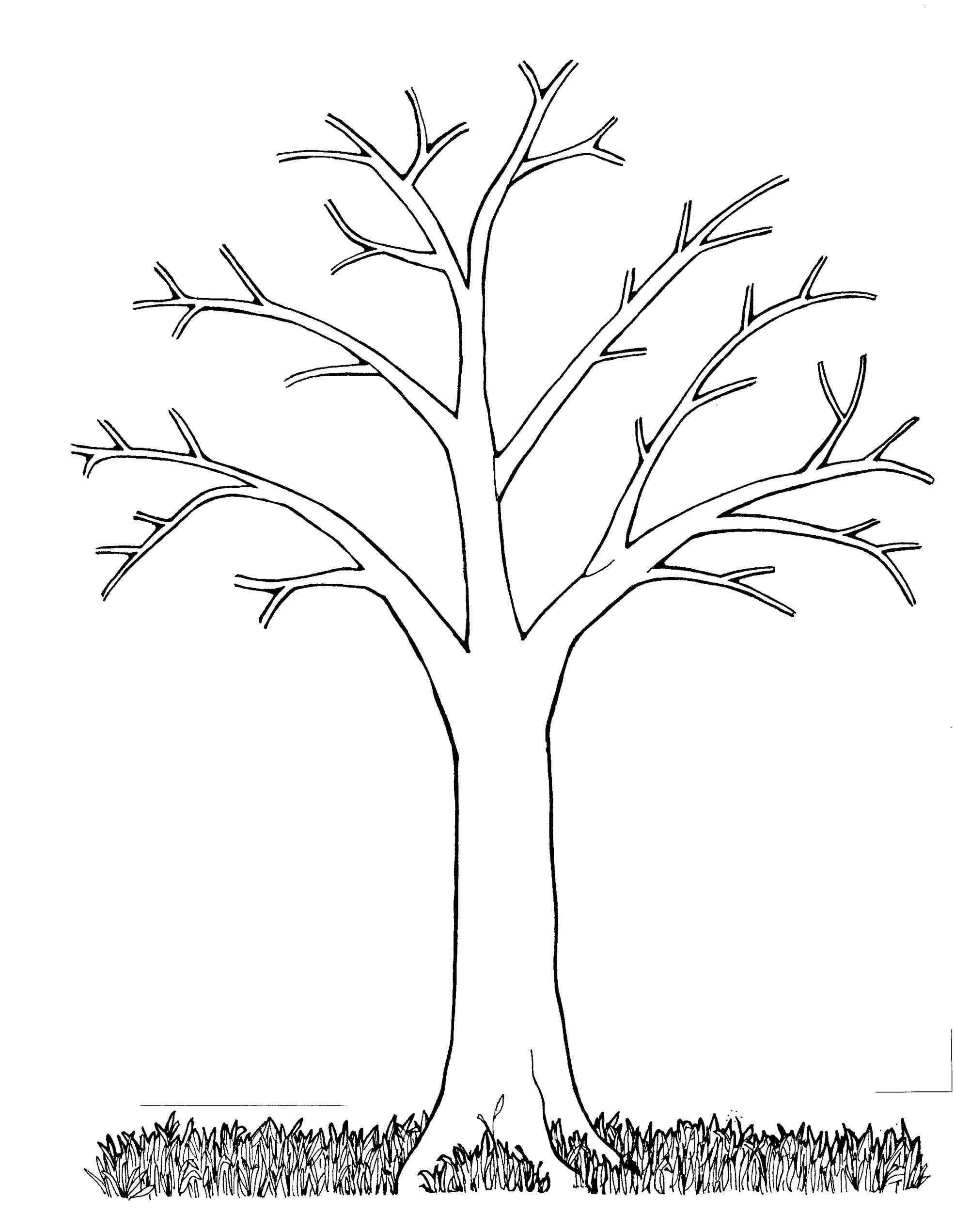 Poplar tree clipart black and white.