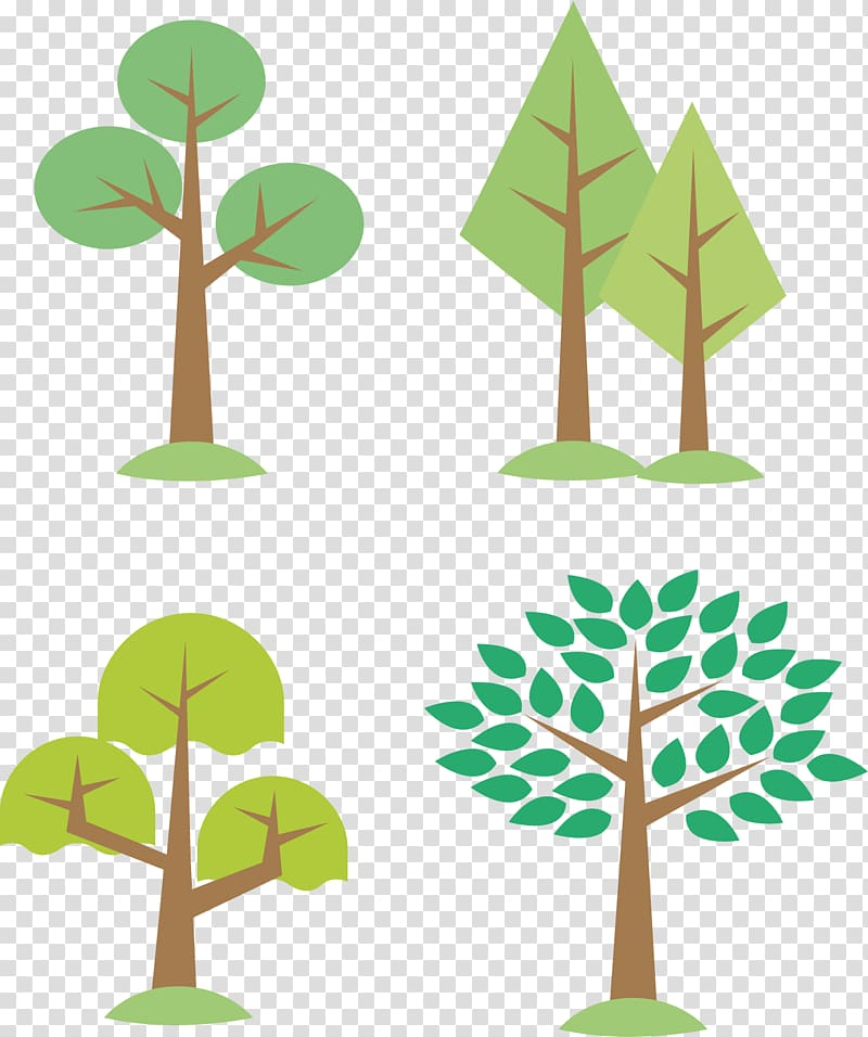 Tree Euclidean , Lush poplar forest transparent background.