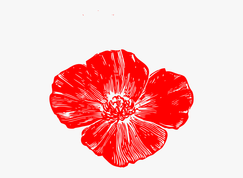 Red Poppy Flower Clipart.