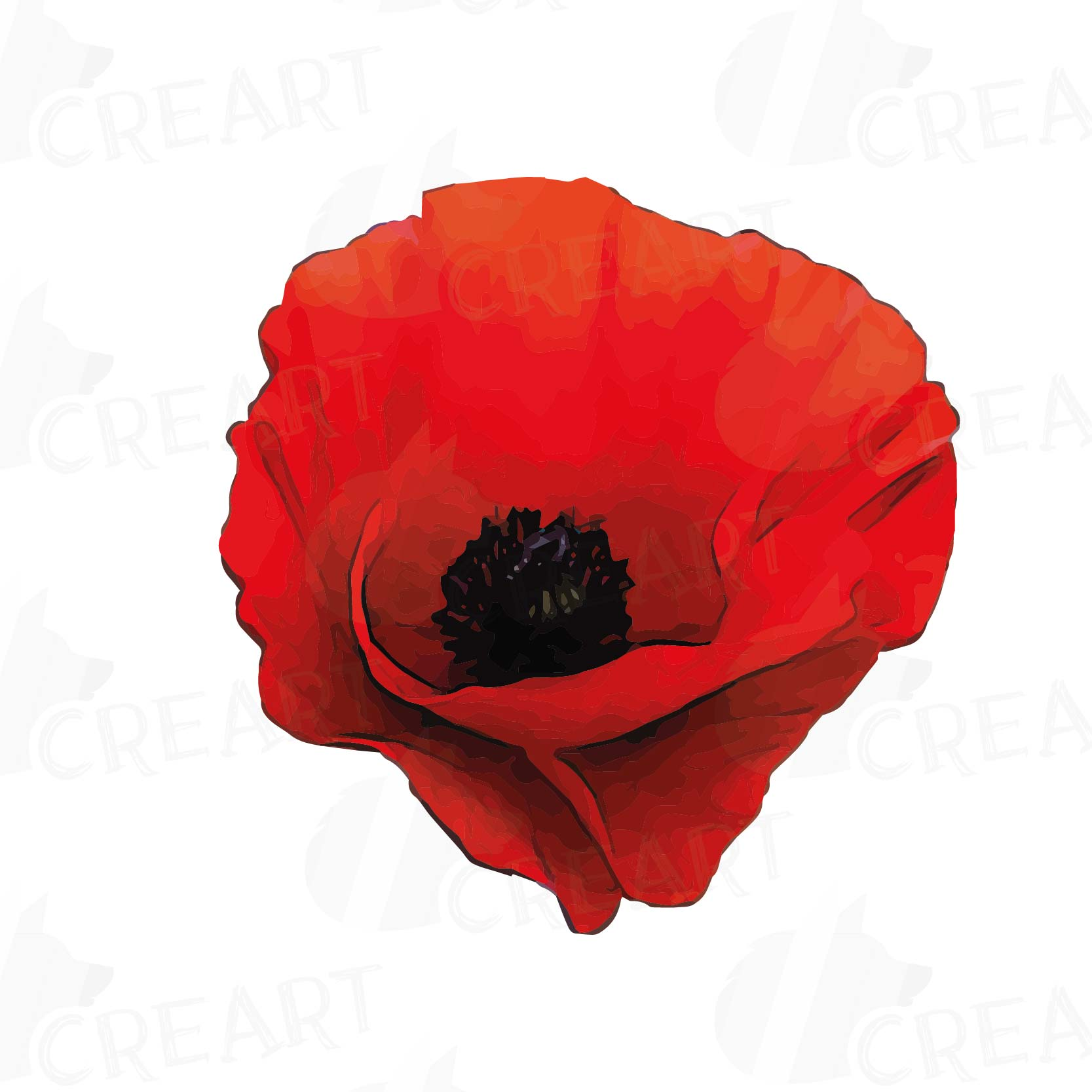 Watercolor Red Poppy flower and leaf clip art pack, Poppies clip art. PNG,  jpg, svg, vector illustrator & corel files included.