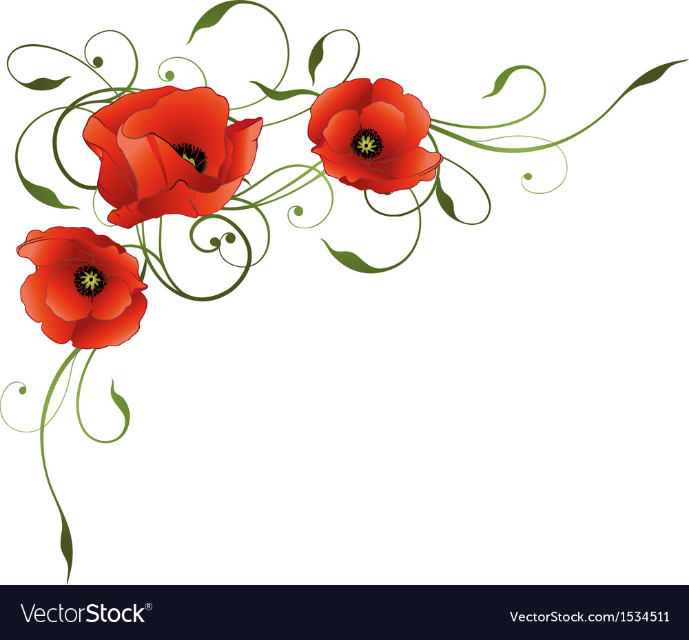 Poppies floral element border.