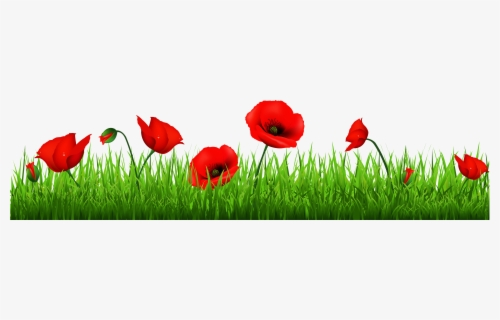 Free Poppy Clip Art with No Background.
