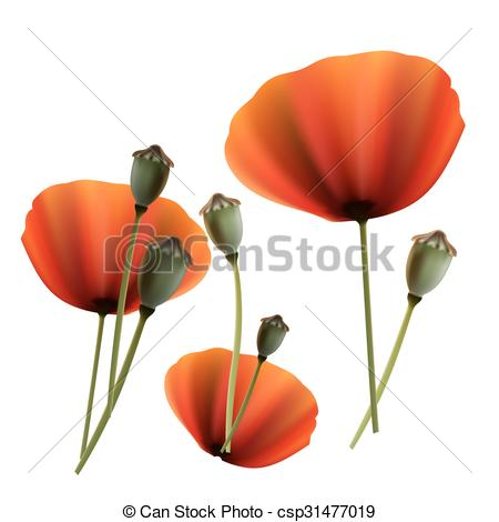 Vector Clip Art of Set of Poppy green and red capsule on white.