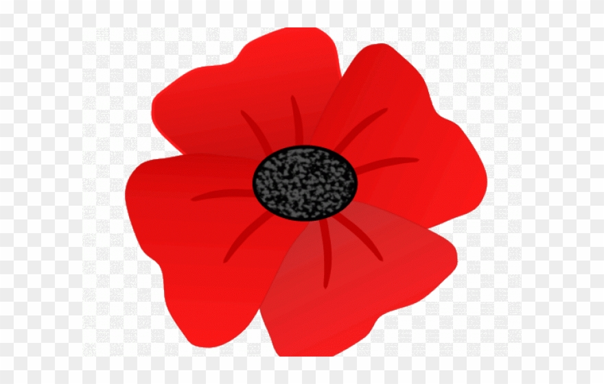 Poppy Clipart Transparent Background.