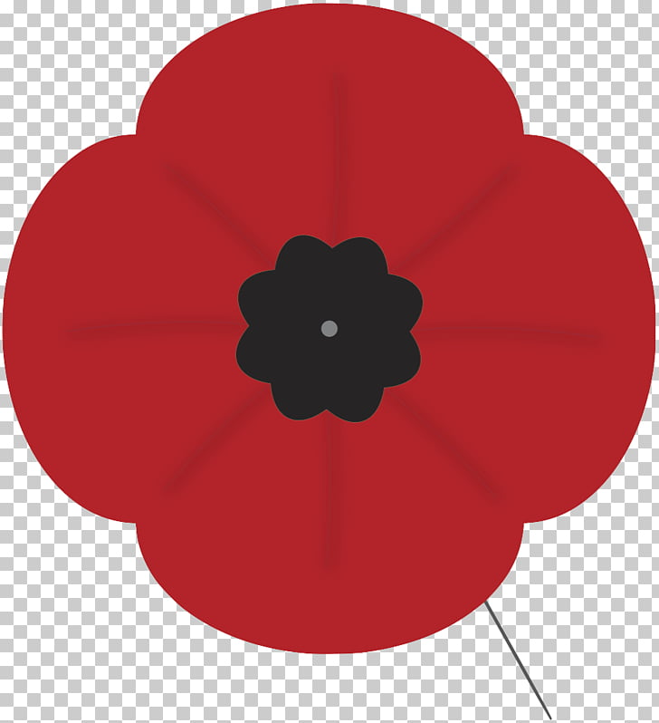 112 remembrance Day PNG cliparts for free download.