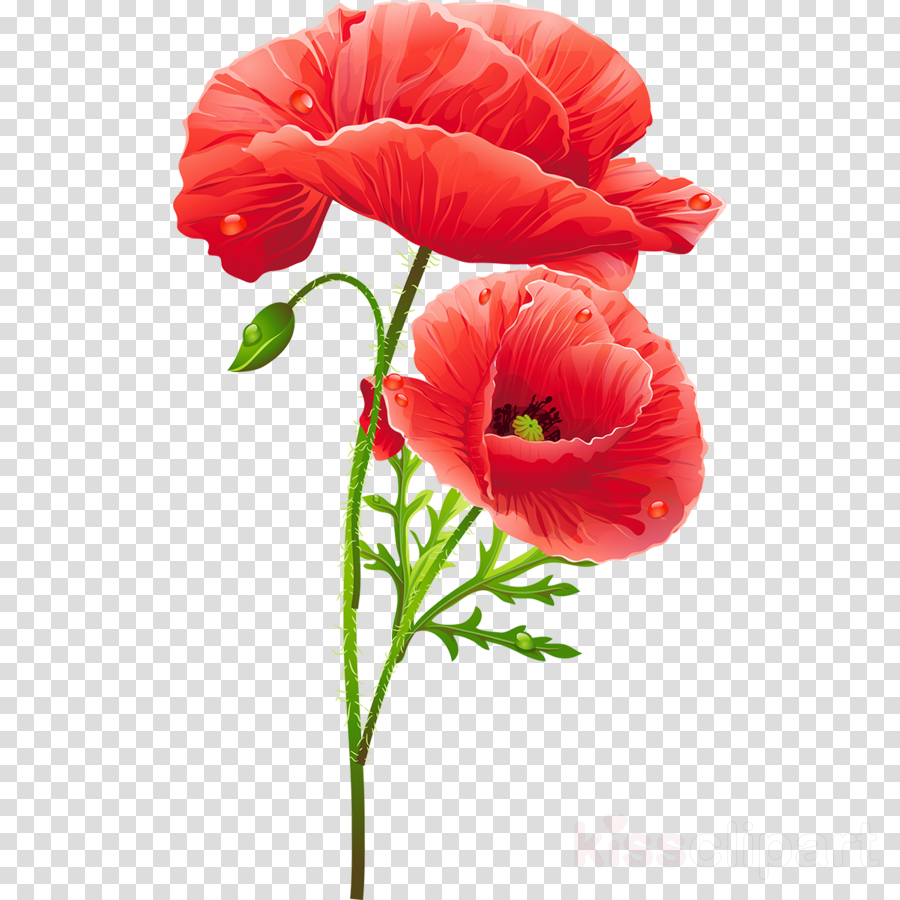 Flower With Stem clipart.