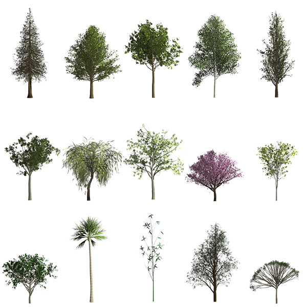 Creating Trees in Photoshop CC 2014 « Julieanne Kost's Blog.