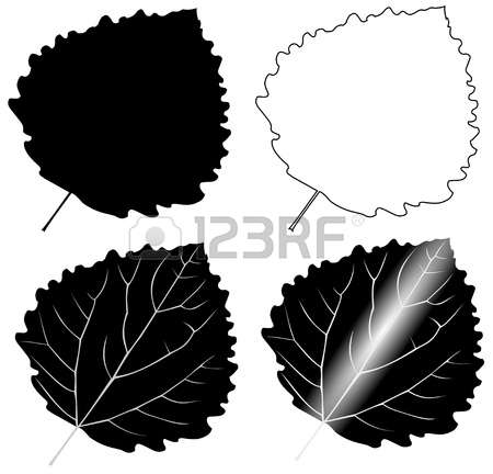 1,245 Leaf Poplar Stock Illustrations, Cliparts And Royalty Free.