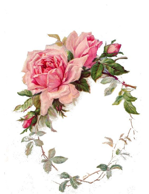 1000+ images about Beautiful Victorian ,Vintage Rose's. on.