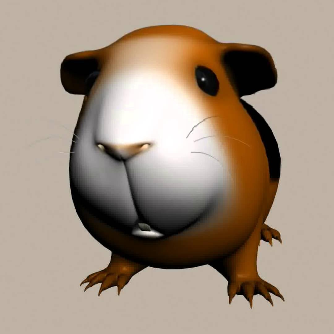 3D Model of Guinea Pig (Cavia Porcellus) Rigged.