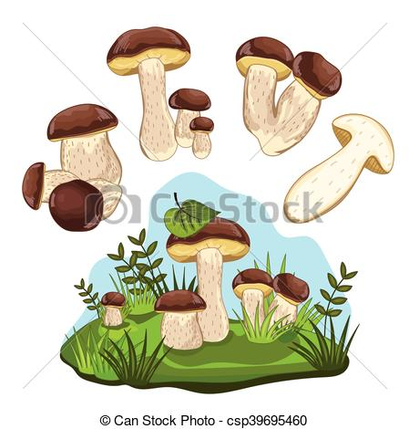 Clip Art Vector of Porcini mushroom isolated, vector illustration.