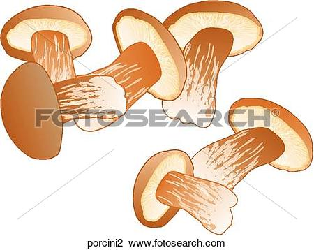 Clip Art of Porcini Mushrooms porcini2.