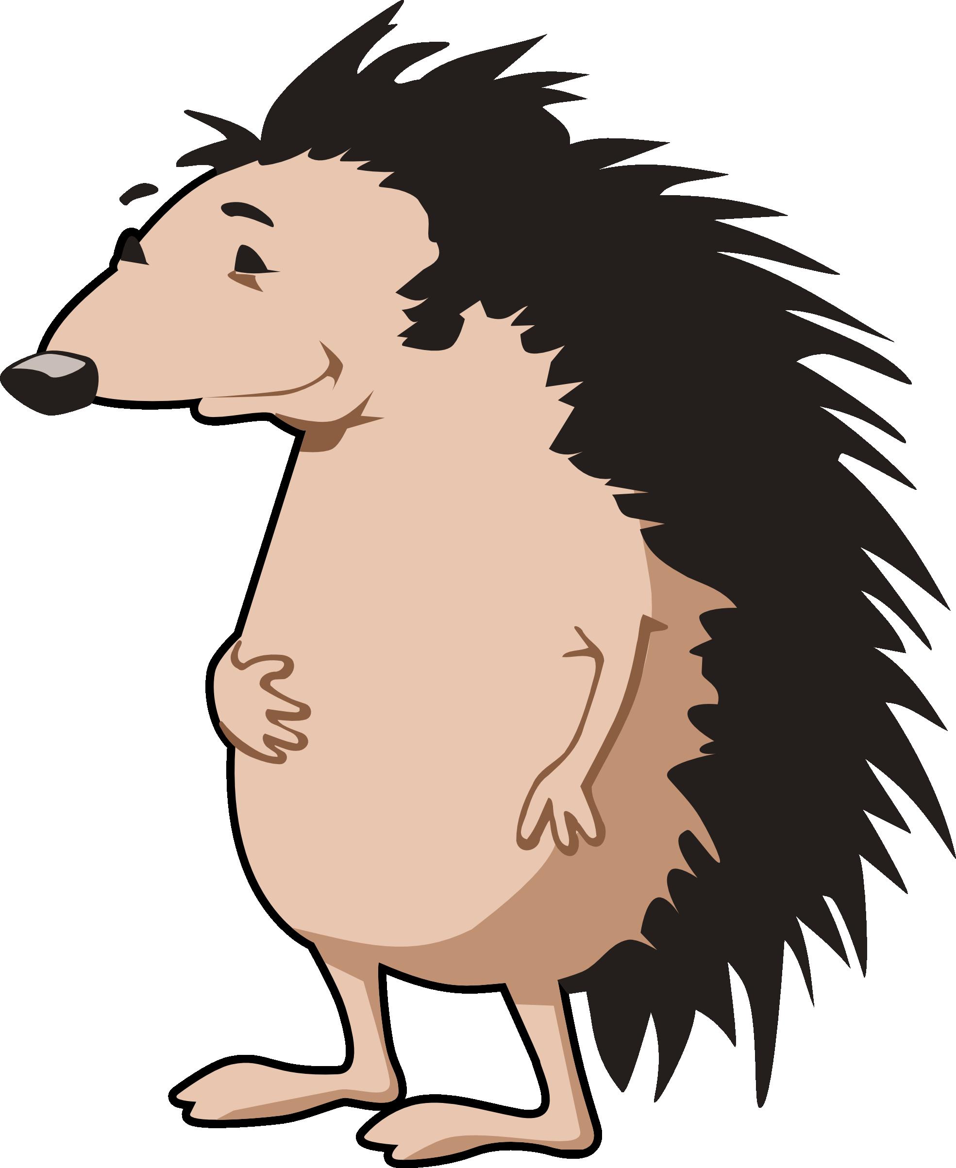 porcupine clipart #35.