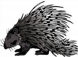 Free Porcupine Cliparts, Download Free Clip Art, Free Clip.