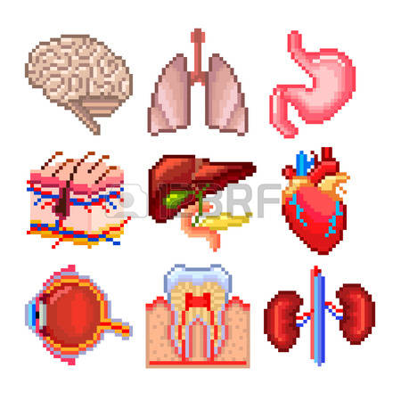 238 Pores Cliparts, Stock Vector And Royalty Free Pores Illustrations.
