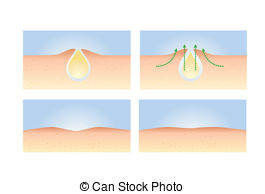 Pore Illustrations and Clip Art. 544 Pore royalty free.
